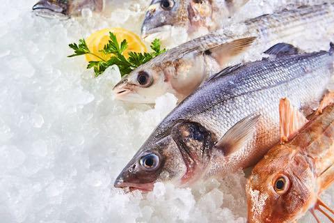 Node n goce vente volaille et poisson congel vers l - Cuisiner poisson congele ...
